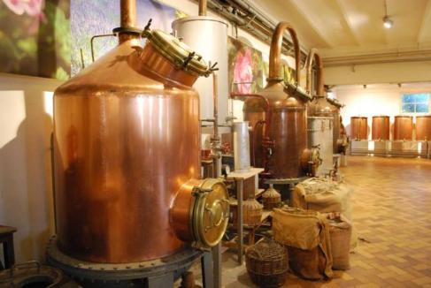 musee-de-la-parfumerie-grasse